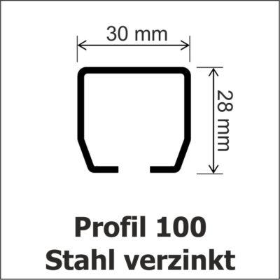 Profil 100 Stahl verzinkt